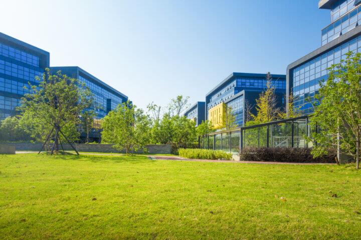 Entretien espace vert : entretenir vos extérieurs en entreprise