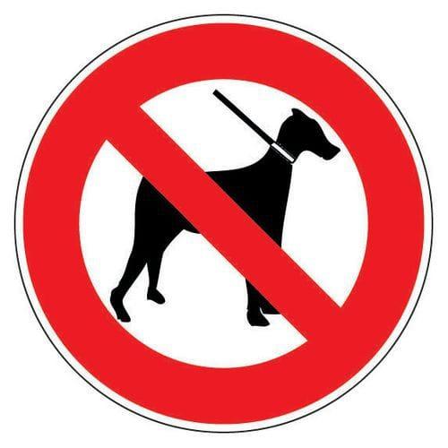 Panneau d'interdiction - Chiens interdits - Adhésif