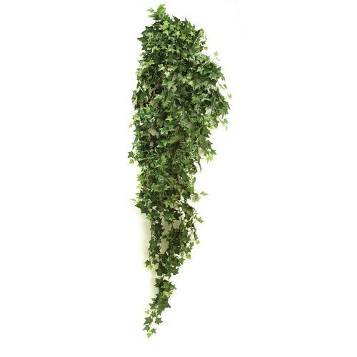Lierre vert 125cm
