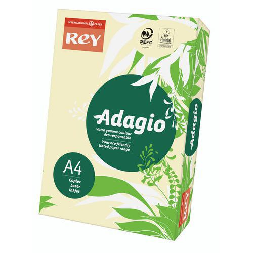 Ramette Adagio 500 feuilles - Couleur - 80 g