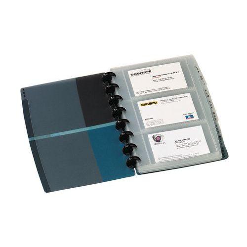 Sachet de 10 pochettes perforées pour carte de visite Proline