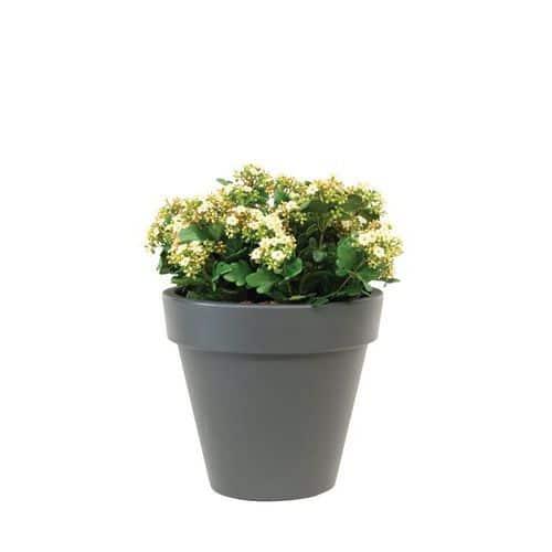 Plante en soie artificielle mod le de table for Plante artificielle bureau